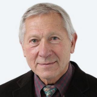 Heinz U Lemke