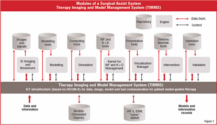 Modules of a Surgical Assist System Therapy Imaging and Model Management System(TIMMS)