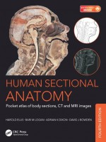 Human Sectional Anatomy: Pocket atlas of body sections, CT and MRI images, Fourth edition